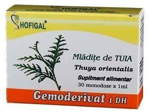 Mladite de tuia - Gemoderivat 30 MDZ thumbnail
