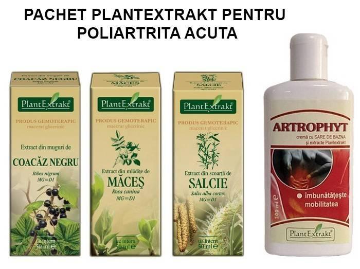 pachet plantextrakt pentru poliartrita acuta