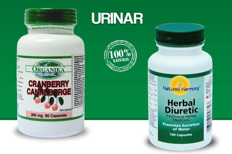 protocol urinar - infectie a sistemului urinar, cistita, pietre
